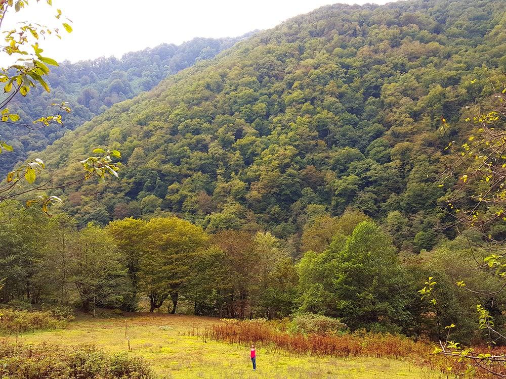 otdyh-v-gruzii
