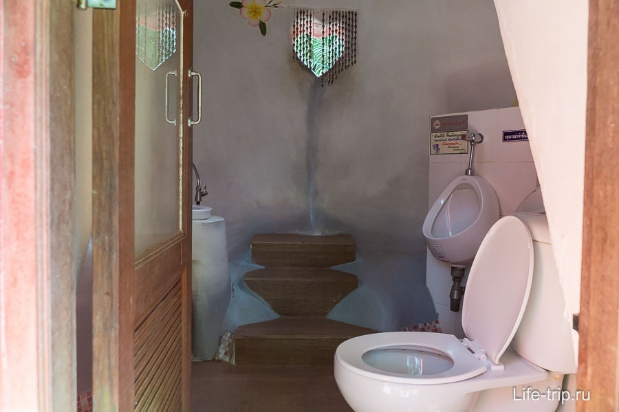 Туалет в попе у свиньи