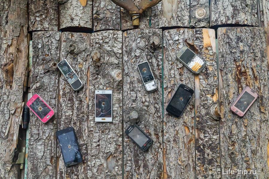 Телефоны прибитые к двери туалета