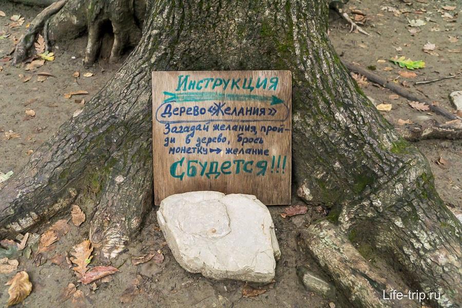 Поставь около любого дерева табличку и легенда готова!