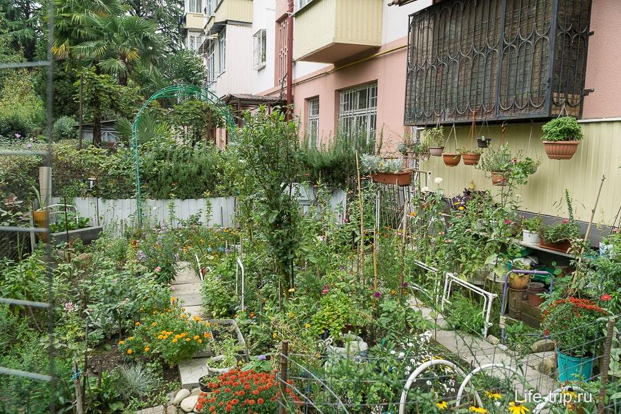 Частные садики - красиво, но самозахват