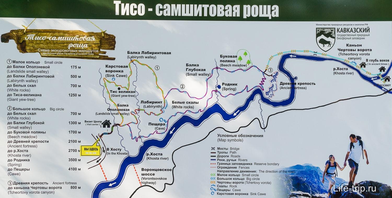 Карта Тисо-самшитовой рощи