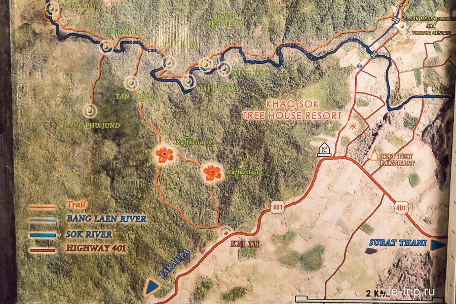 Карта нац парка Као Сок - можно получить представление, где раффлезии