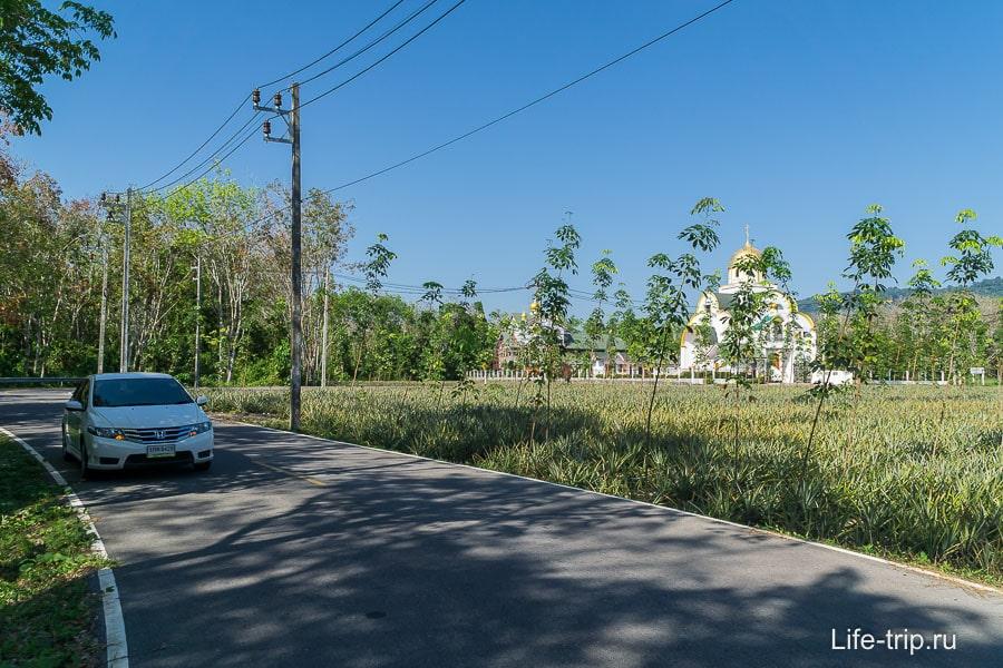 Моя машинка Honda City и православный храм на фоне пальм