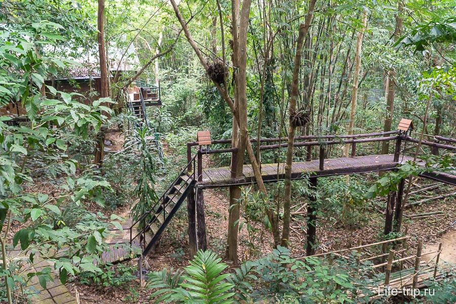 Ночевка в национальном парке в домике на дереве -  Treehouse Resort