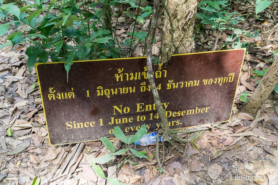 Предупреждение на входе в джунгли, пещеры заполняются водой, опасно