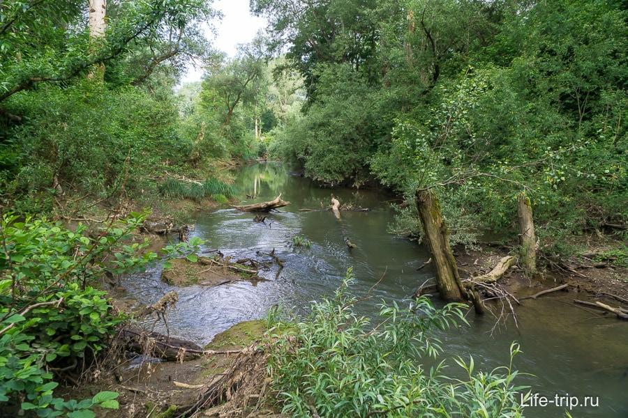 В 20 метрах течет река Шебш
