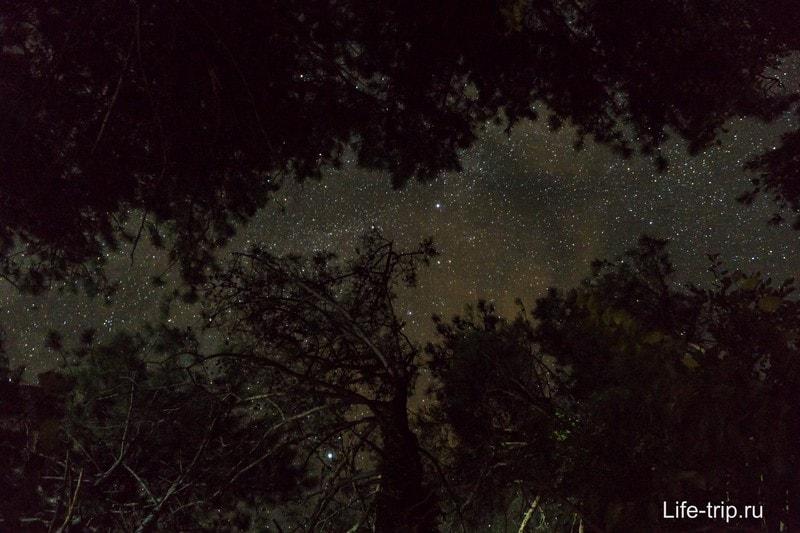 Ну и ночью тоже, таких звезд в городе не увидишь