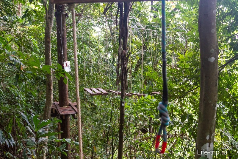 Веревочный парк Tree top adventure
