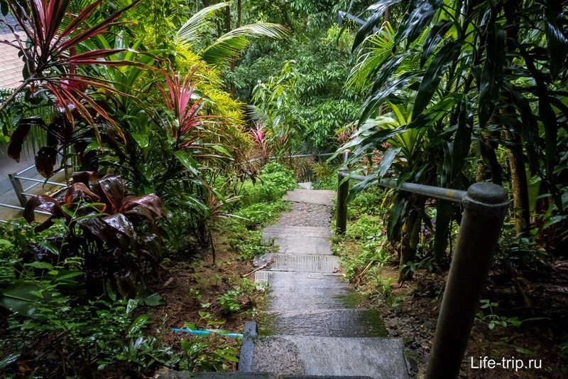 Лестница ведущая к обеденному залу
