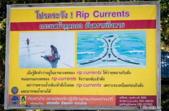 Обратное течение в океане (rip-currents)