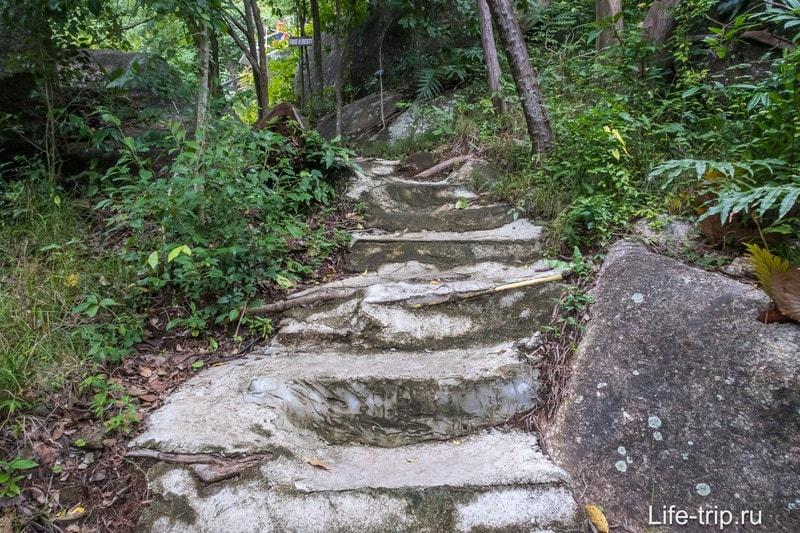Старая пешеходная тропа укреплена досками и цементом