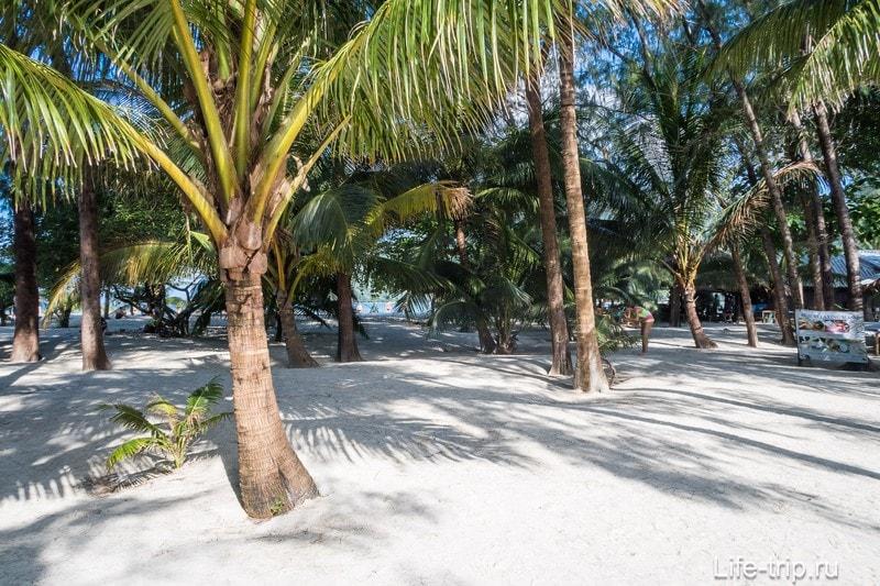 Пляж Малибу на Пангане - это пальмовая роща с белоснежным песком