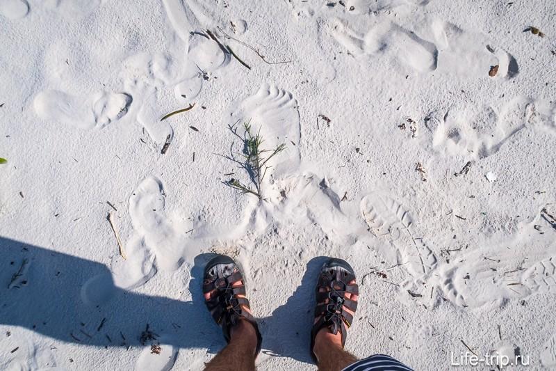 А это домик песчаных мух. Красиво, но лежать долго не получится - заедят
