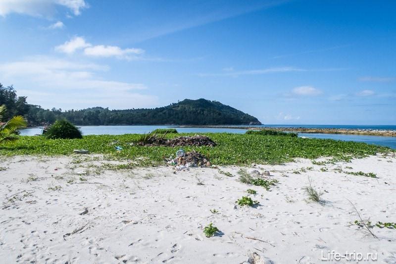 На песке ползучие растения и открытое пространство без тени.