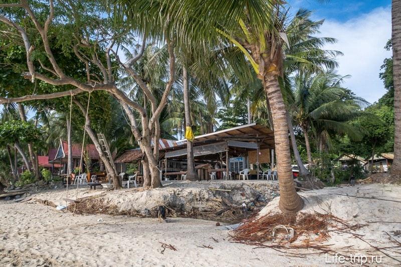Тени много - пальмы вперемешку с деревьями название которых я не помню