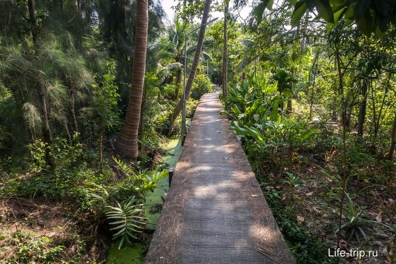 Некоторые дорожки идут просто сквозь лес
