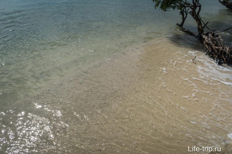 Если смотреть прямо, то под водой видно крупные обломки кораллов.