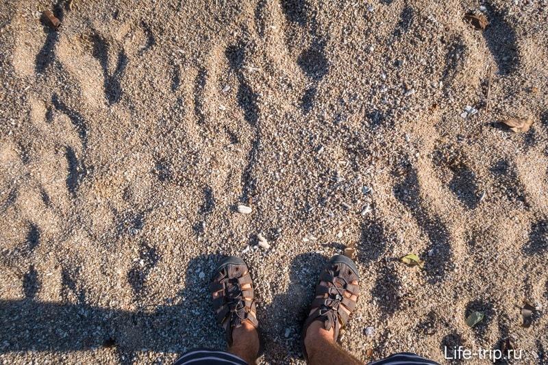 Песок, мягко говоря, не очень.