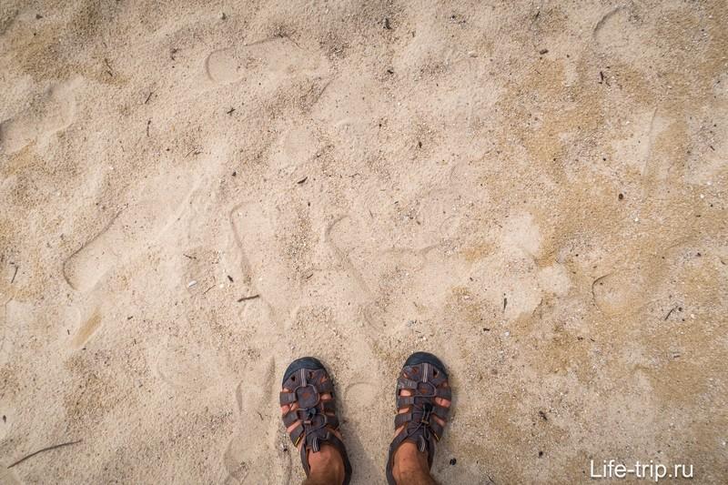 Песок крупный, с примесью коралловых обломков