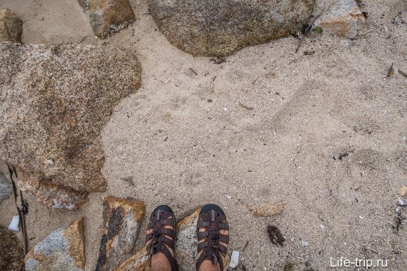Наглядно о составе песка на пляже
