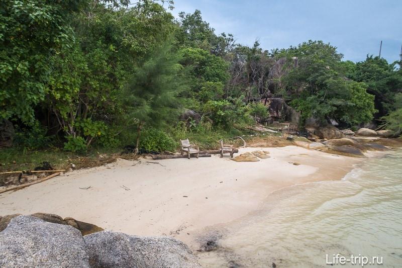 Берег позади пляжа весь порос зеленью разного калибра.