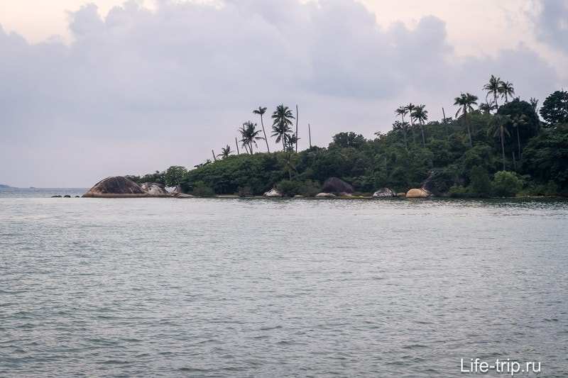На дальнем правом краю пляжа торчат погибающие пальмы, без листьев.