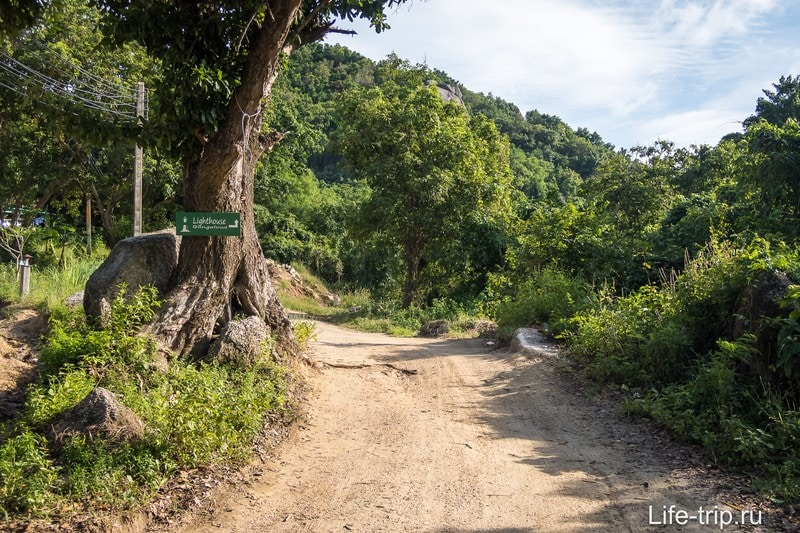 Дорога к Лайтхаусу