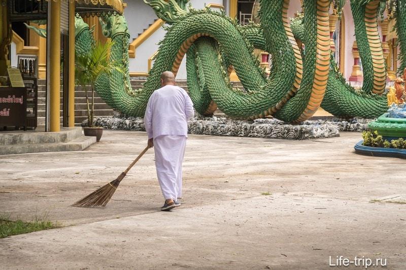 Женщины тоже могут быть монахинями в буддизме. На них ложится бОльшая часть бытовых забот в храме. Некоторые вещи не меняются, да?