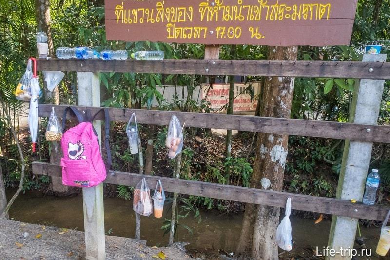 Хранилище запрещёнки. На входе отбирают еду и пластиковые бутылки.