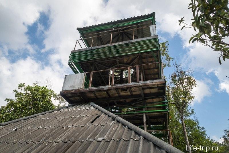 Башня орнитологов