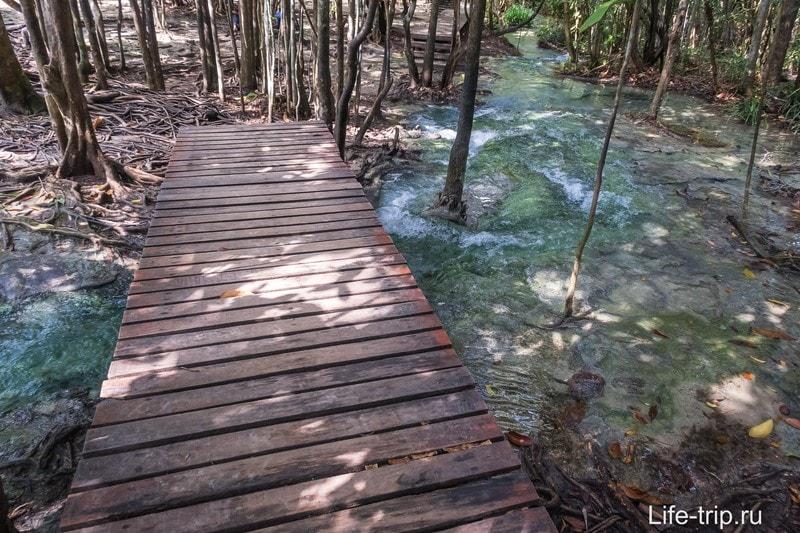 Из озера выходит бурный поток, через который проложен мостик. Не хватайтесь руками за деревья - там живность и она кусается.