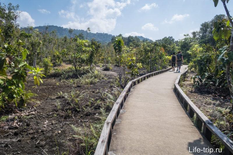 После Изумрудного Озера начинается дорожка по открытой местности.
