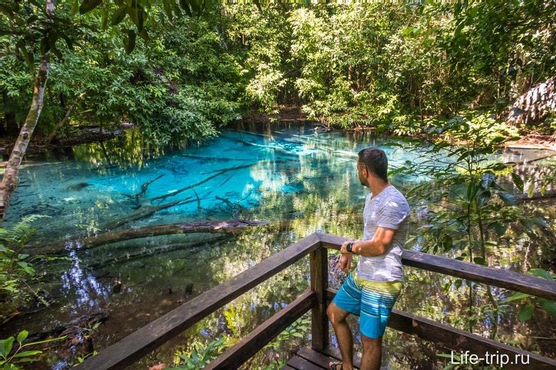 Изумрудное и Голубое озера в Краби - вынос мозга от синевы и лес в воде