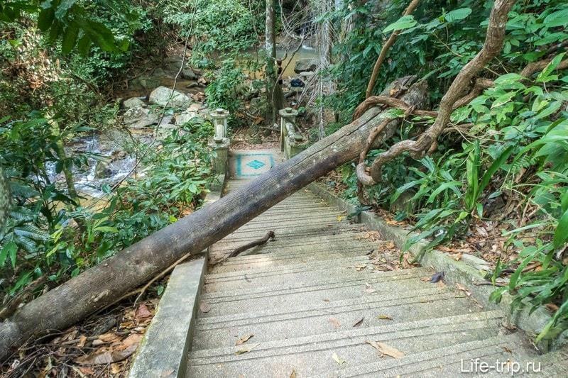 От лестницы к дикому каскаду ведет еще одна лестница, но уже вниз