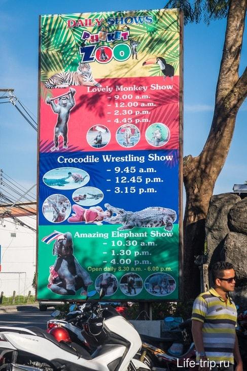 Расписание шоу в зоопарке Пхукета