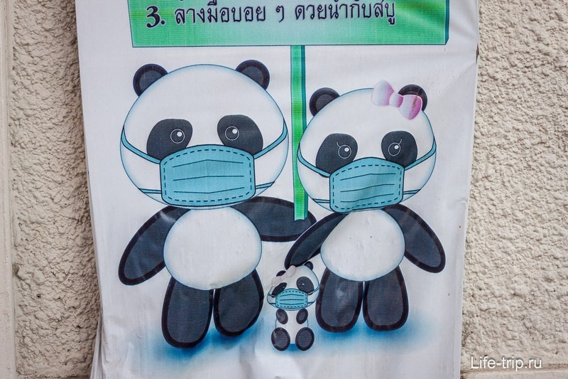 Прививки в Таиланде и болезни