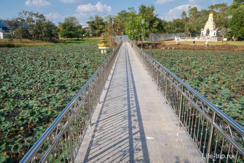 Мост через пруд с лотосами