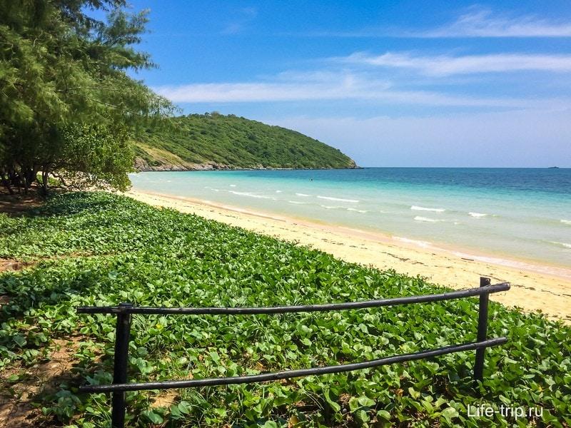 Дальний, дикий край пляжа