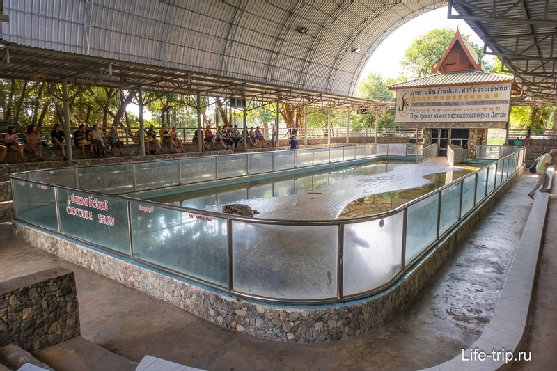 Арена для шоу крокодилов