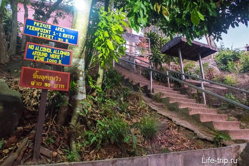 Иду вниз по бетонной лестнице, оборачиваясь назад