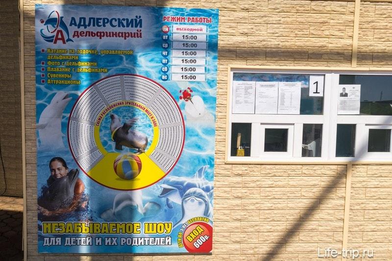 Дельфинарий в Адлере (бывшая Акватория) - для неискушенных