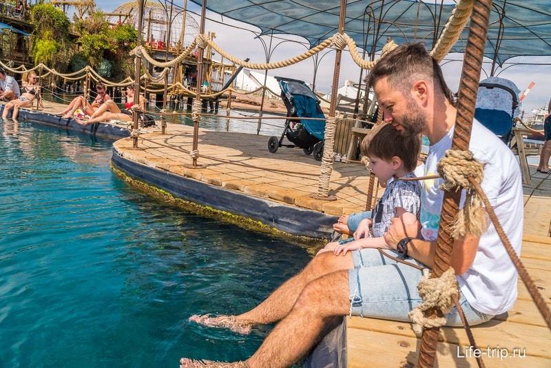 Мы в Эйлате, ждем дельфинов