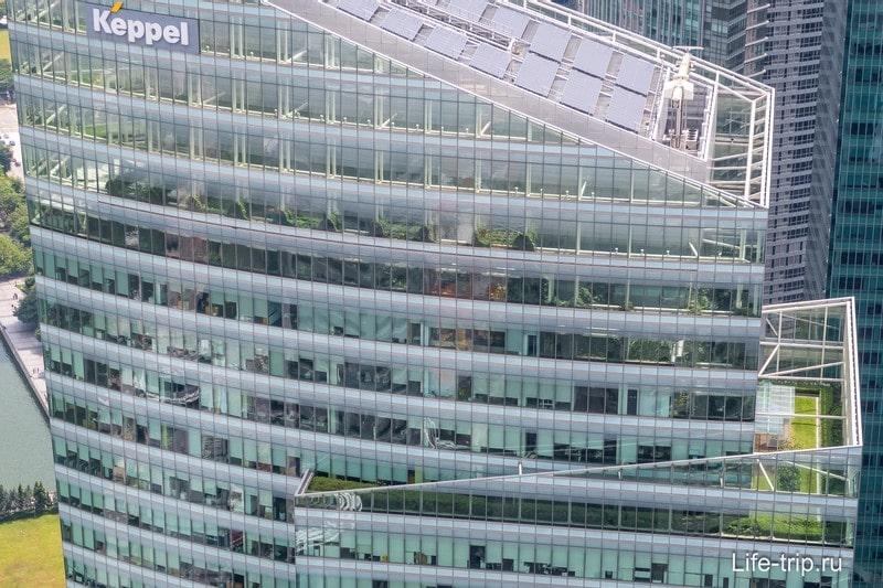 Какое-то здание с растениями внутри