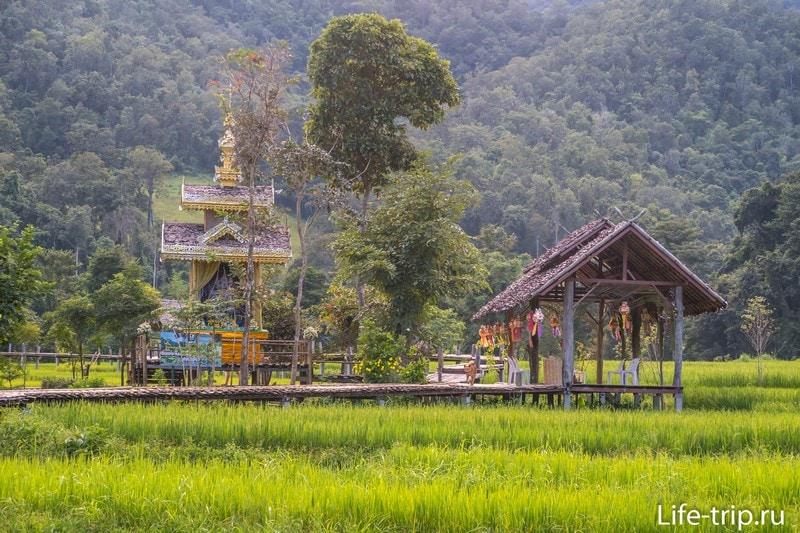 Бамбуковый мост в Пае
