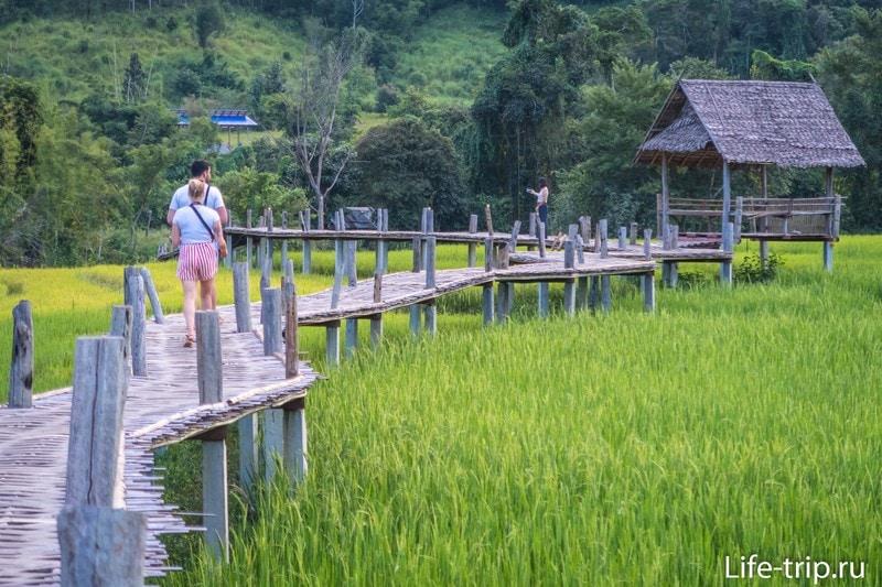 Бамбуковый мост в Пае - прогулка по рисовым полям в окружении гор