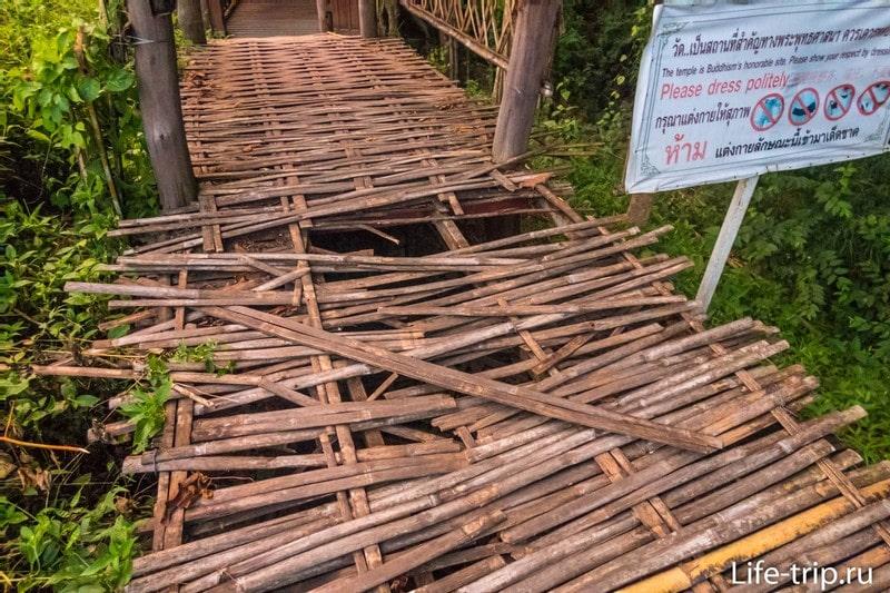 Перед входом бамбук прогнил