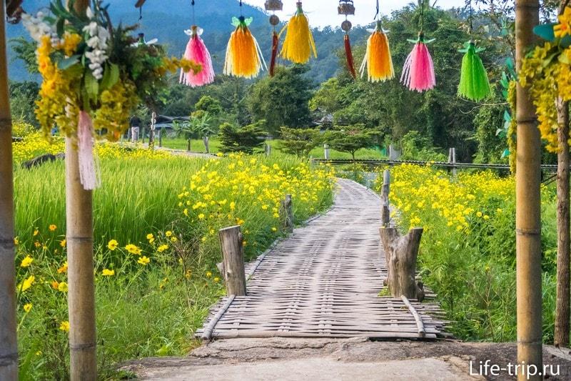 Вход на бамбуковый мост, здесь же касса