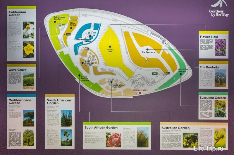 Схема садов Garden by the Bay