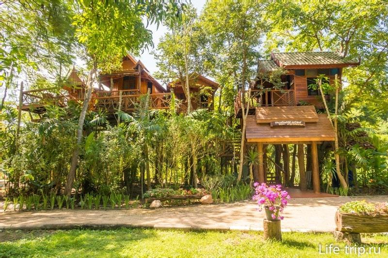 Новый дом на дереве